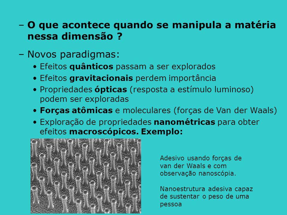 Adesivo usando forças de van der Waals e com observação nanoscópia. Nanoestrutura adesiva capaz de sustentar o peso de uma pessoa –Novos paradigmas: E