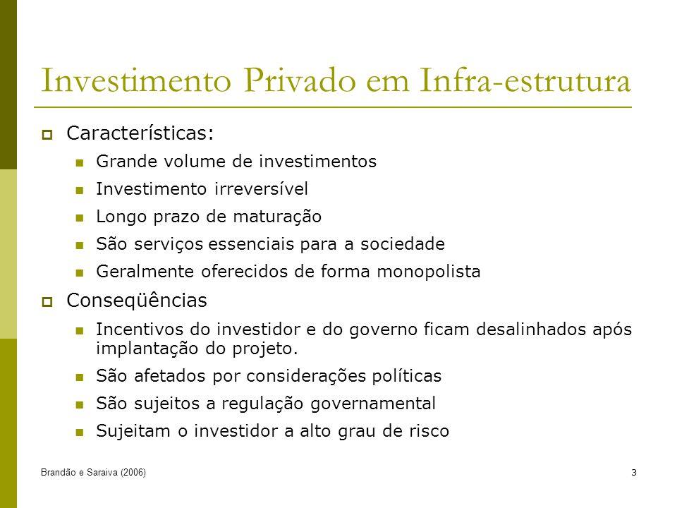 Brandão e Saraiva (2006)3 Investimento Privado em Infra-estrutura Características: Grande volume de investimentos Investimento irreversível Longo praz