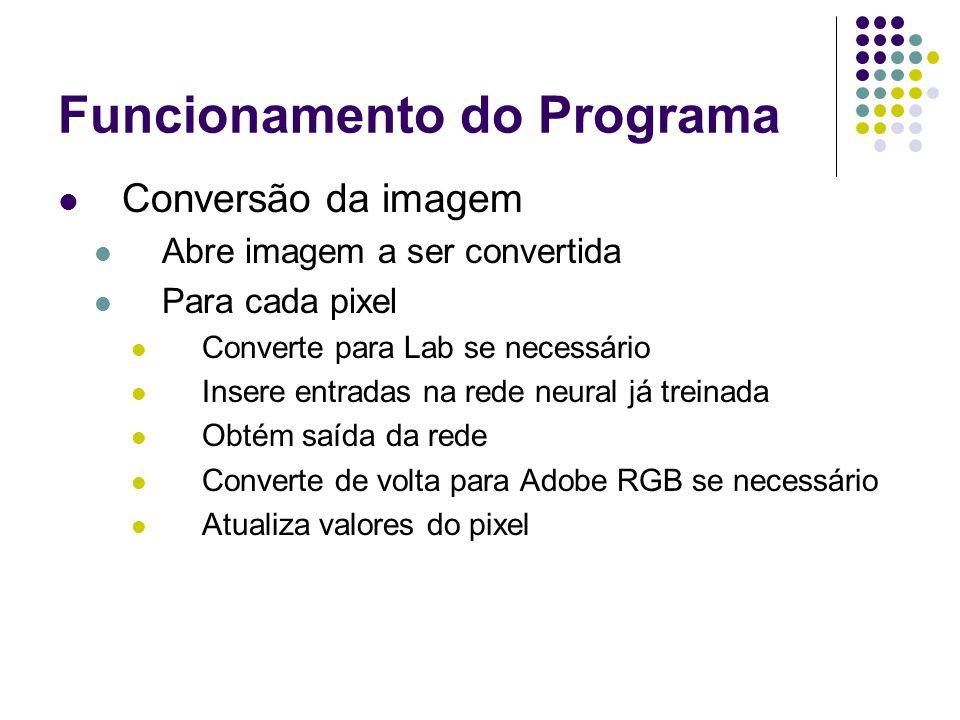 Funcionamento do Programa Conversão da imagem Abre imagem a ser convertida Para cada pixel Converte para Lab se necessário Insere entradas na rede neu