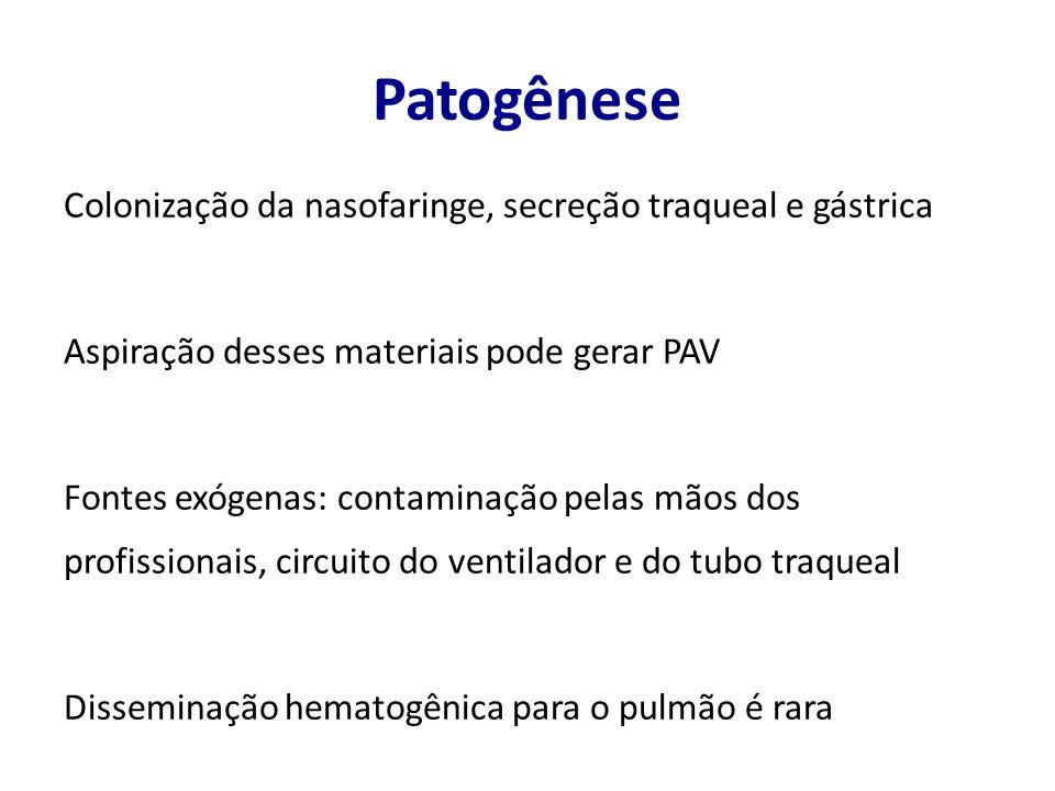 Patogênese Colonização da nasofaringe, secreção traqueal e gástrica Aspiração desses materiais pode gerar PAV Fontes exógenas: contaminação pelas mãos dos profissionais, circuito do ventilador e do tubo traqueal Disseminação hematogênica para o pulmão é rara