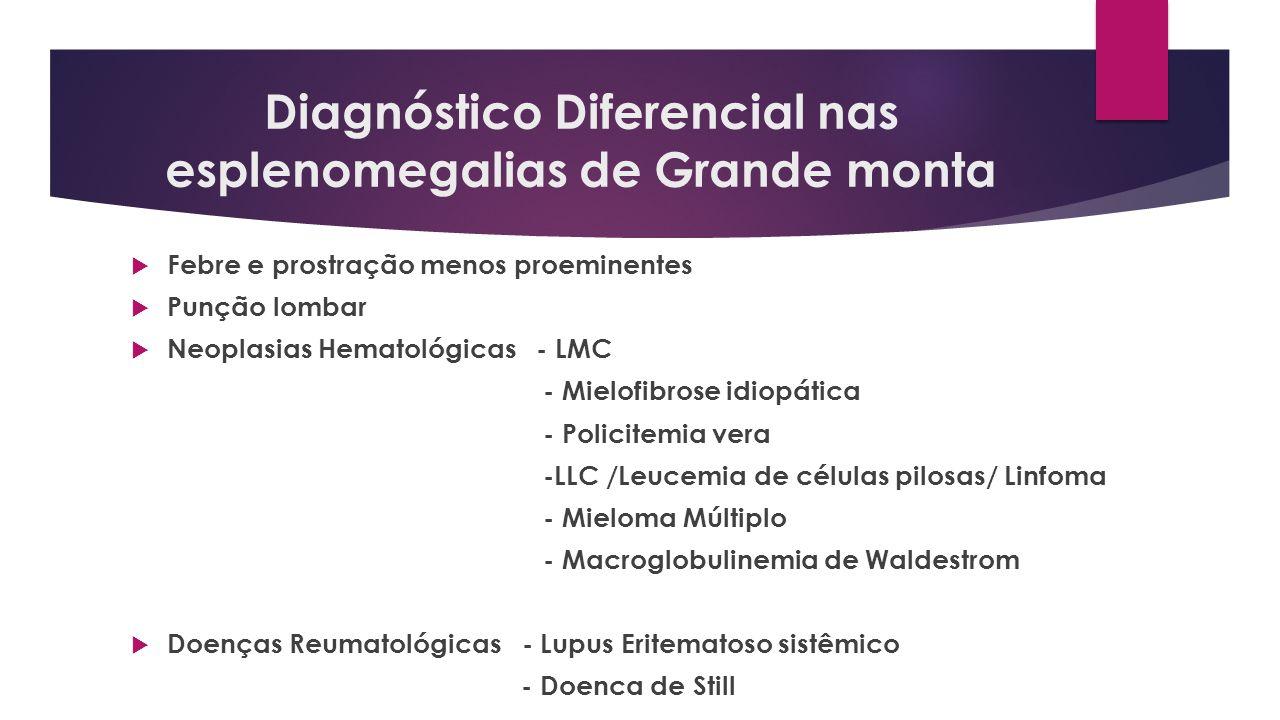 Diagnóstico Diferencial nas esplenomegalias de Grande monta Febre e prostração menos proeminentes Punção lombar Neoplasias Hematológicas - LMC - Mielo