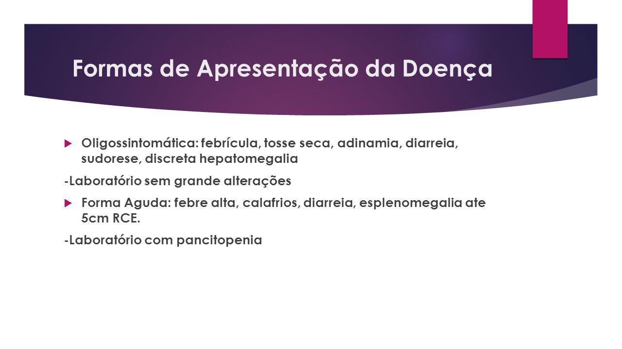 Formas de Apresentação da Doença Oligossintomática: febrícula, tosse seca, adinamia, diarreia, sudorese, discreta hepatomegalia -Laboratório sem grand