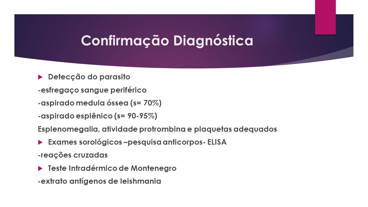 Confirmação Diagnóstica Detecção do parasito -esfregaço sangue periférico -aspirado medula óssea (s= 70%) -aspirado esplênico (s= 90-95%) Esplenomegal