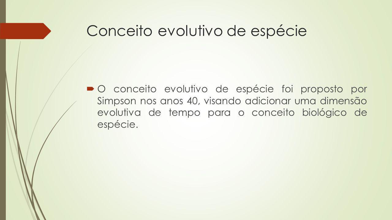 Conceito evolutivo de espécie O conceito evolutivo de espécie foi proposto por Simpson nos anos 40, visando adicionar uma dimensão evolutiva de tempo