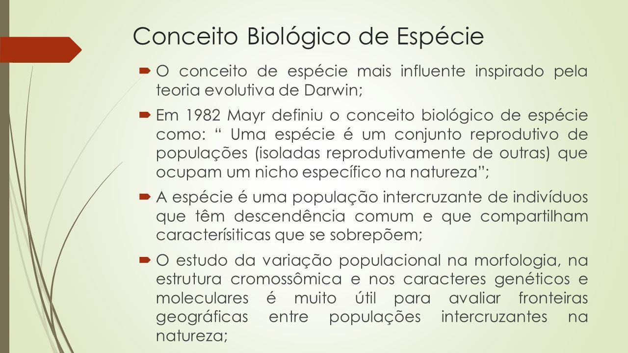Conceito Biológico de Espécie O conceito de espécie mais influente inspirado pela teoria evolutiva de Darwin; Em 1982 Mayr definiu o conceito biológic