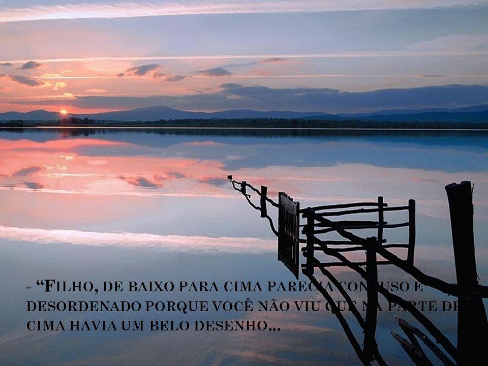 - F ILHO, DE BAIXO PARA CIMA PARECIA CONFUSO E DESORDENADO PORQUE VOCÊ NÃO VIU QUE NA PARTE DE CIMA HAVIA UM BELO DESENHO...
