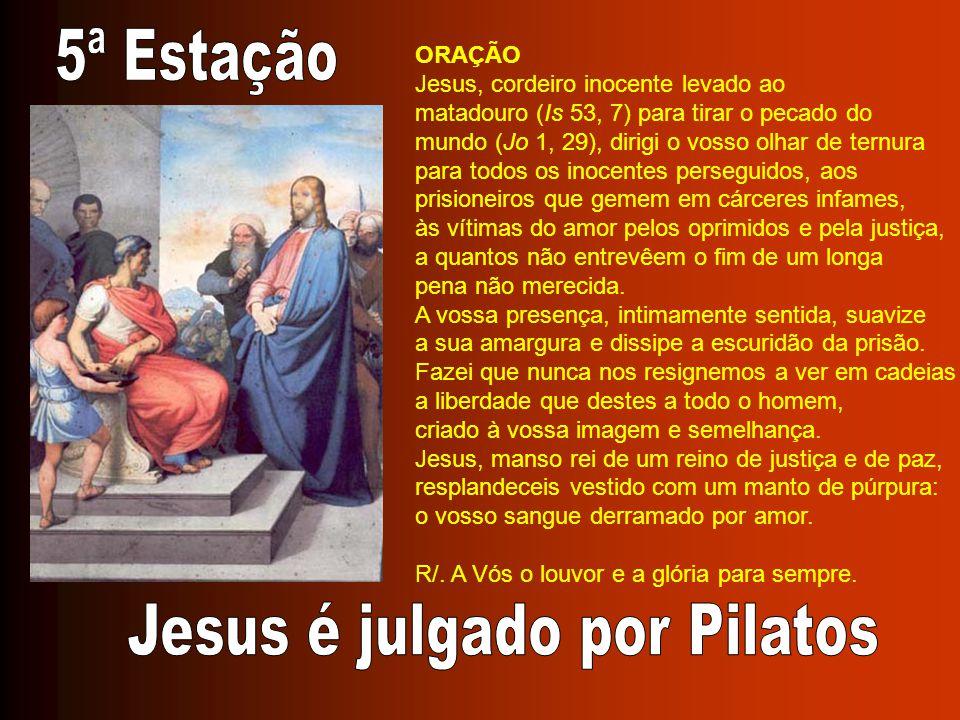 ORAÇÃO Jesus, cordeiro inocente levado ao matadouro (Is 53, 7) para tirar o pecado do mundo (Jo 1, 29), dirigi o vosso olhar de ternura para todos os