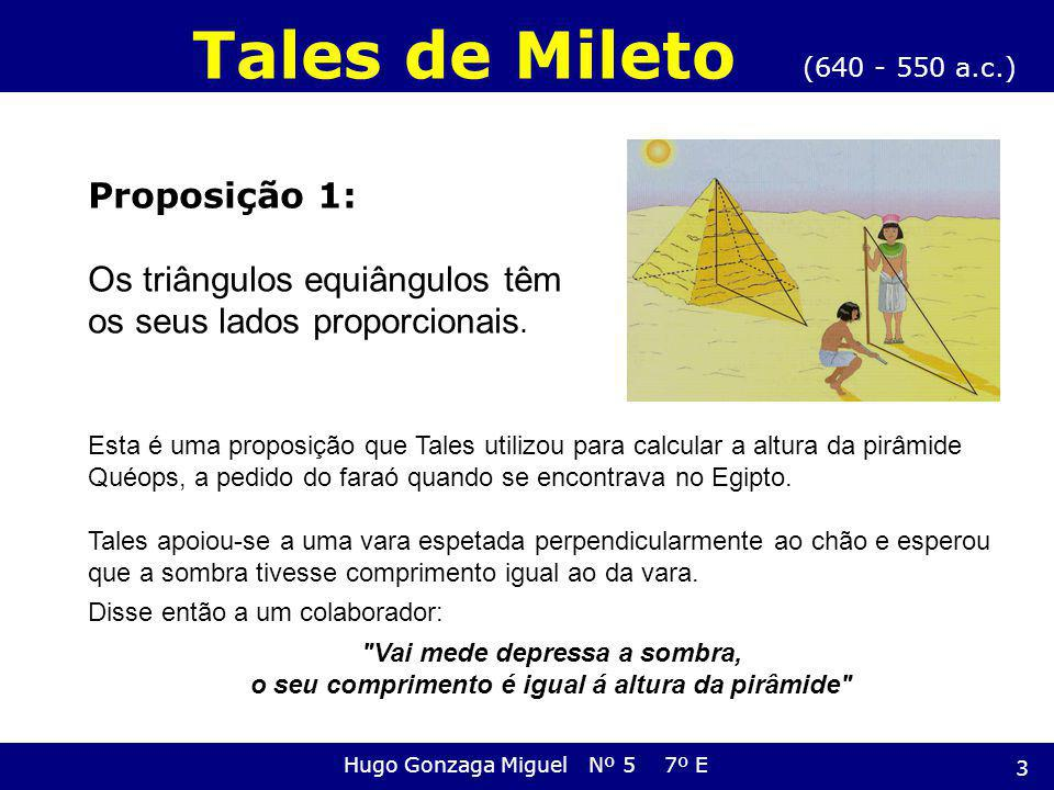 Proposição 1: Os triângulos equiângulos têm os seus lados proporcionais. (640 - 550 a.c.) Tales de Mileto Hugo Gonzaga Miguel Nº 5 7º E Esta é uma pro