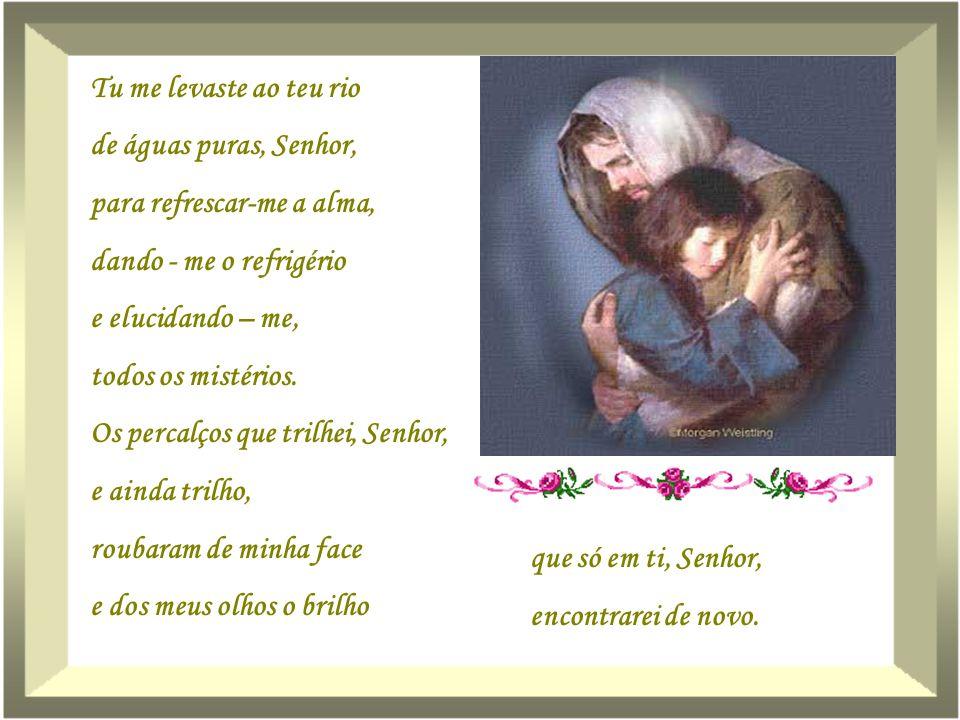 Confessei-te, humildemente, que pequei, Senhor, mais uma vez. Senti escárnio de mim mesma... Feri - te o coração e a nobreza que só tu, Senhor, tens e
