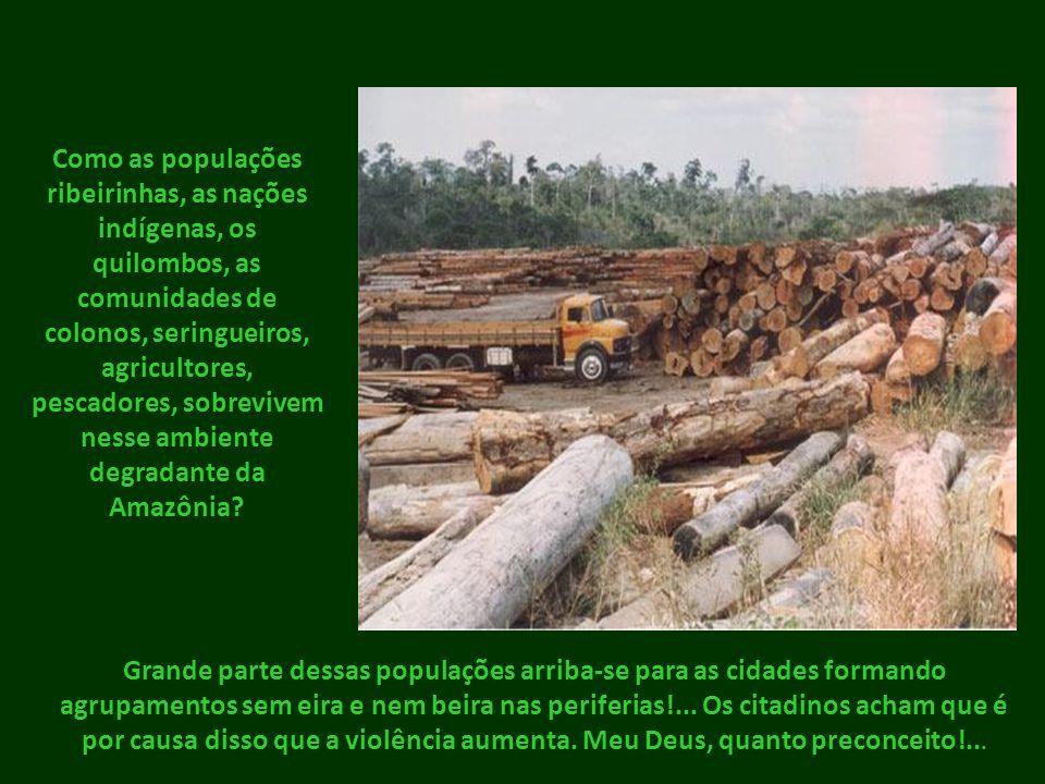 Como as populações ribeirinhas, as nações indígenas, os quilombos, as comunidades de colonos, seringueiros, agricultores, pescadores, sobrevivem nesse