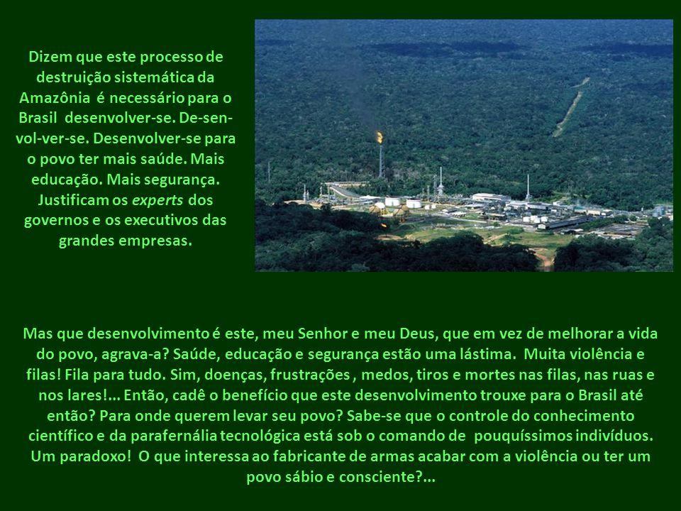 Dizem que este processo de destruição sistemática da Amazônia é necessário para o Brasil desenvolver-se. De-sen- vol-ver-se. Desenvolver-se para o pov
