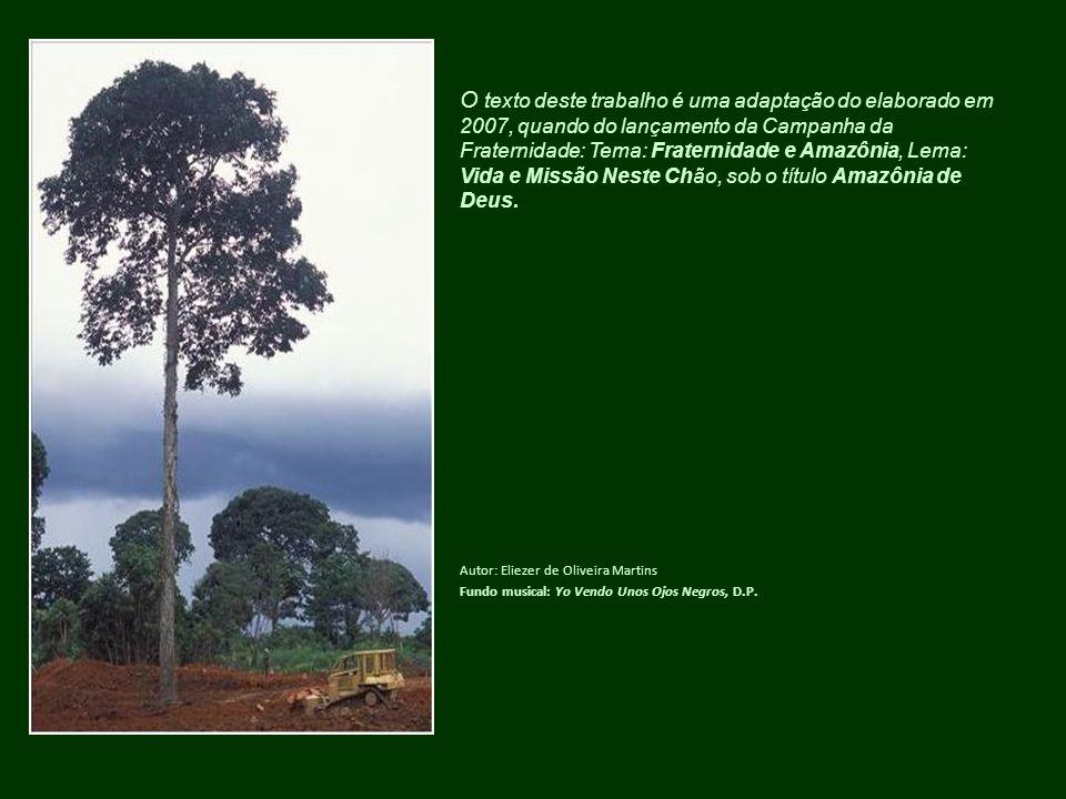 O texto deste trabalho é uma adaptação do elaborado em 2007, quando do lançamento da Campanha da Fraternidade: Tema: Fraternidade e Amazônia, Lema: Vi