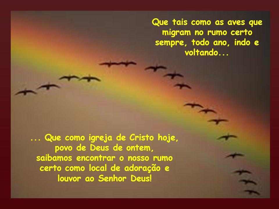 Que tais como as aves que migram no rumo certo sempre, todo ano, indo e voltando...... Que como igreja de Cristo hoje, povo de Deus de ontem, saibamos
