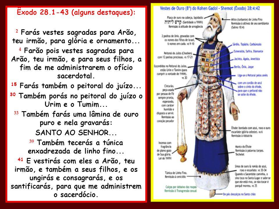 Êxodo 28.1-43 (alguns destaques): 2 Farás vestes sagradas para Arão, teu irmão, para glória e ornamento... 4 Farão pois vestes sagradas para Arão, teu