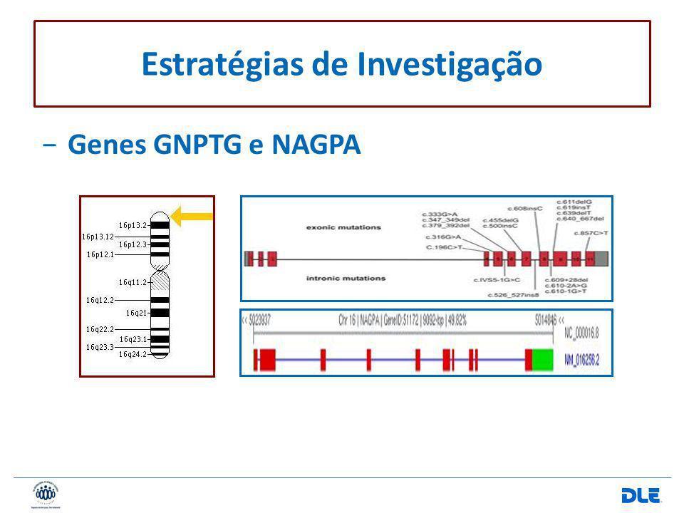 Genes GNPTG e NAGPA Estratégias de Investigação