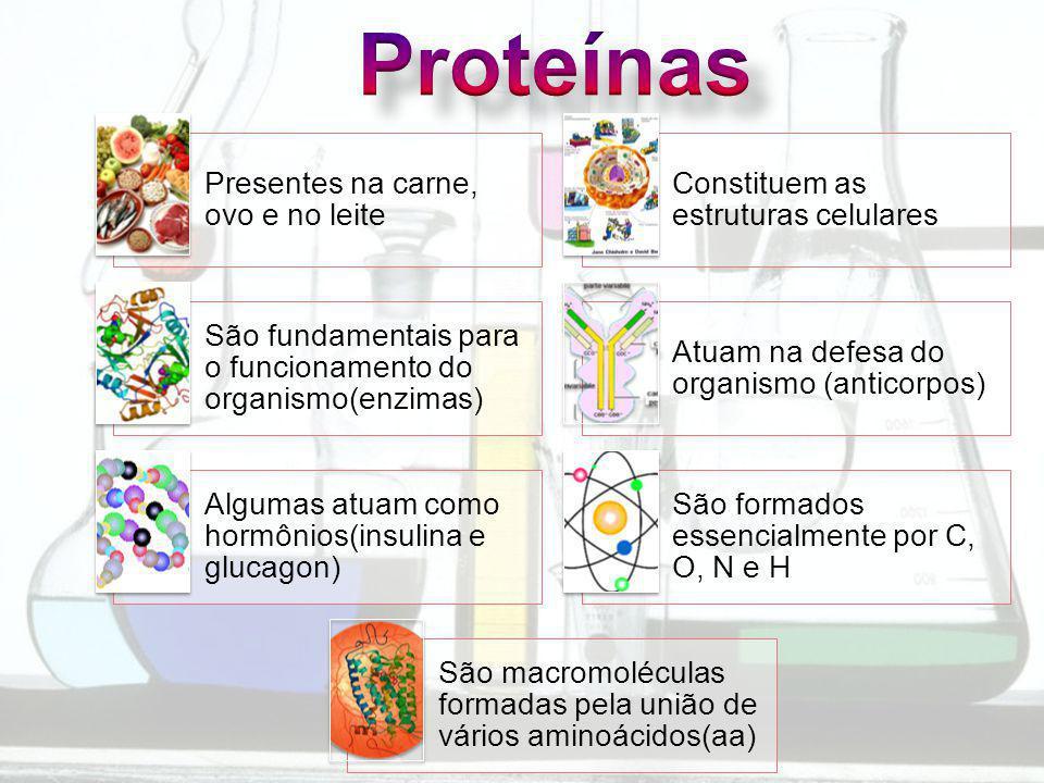 Presentes na carne, ovo e no leite Constituem as estruturas celulares São fundamentais para o funcionamento do organismo(enzimas) Atuam na defesa do organismo (anticorpos) Algumas atuam como hormônios(insulina e glucagon) São formados essencialmente por C, O, N e H São macromoléculas formadas pela união de vários aminoácidos(aa)