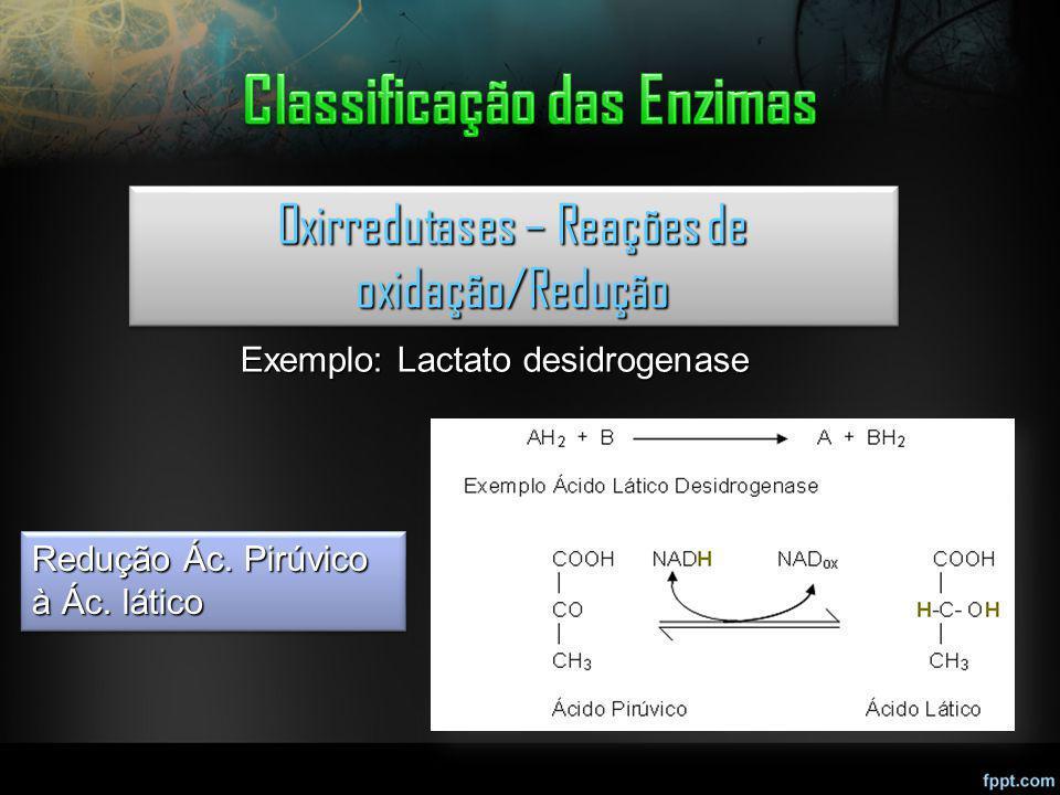 Oxirredutases – Reações de oxidação/Redução Exemplo: Lactato desidrogenase Redução Ác. Pirúvico à Ác. lático
