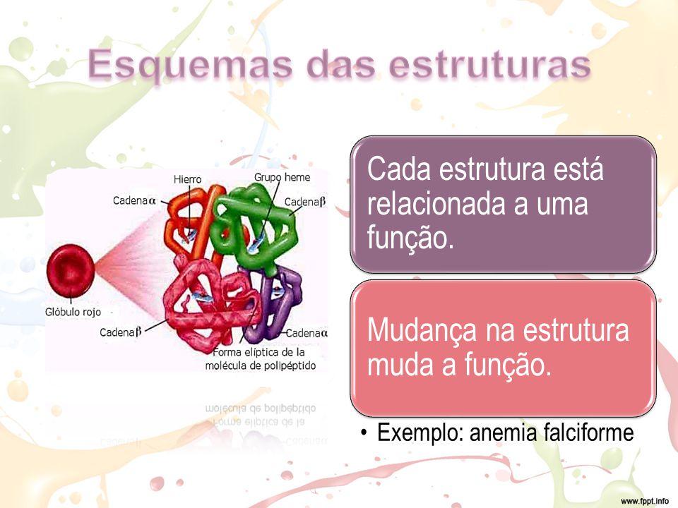 Cada estrutura está relacionada a uma função.Mudança na estrutura muda a função.