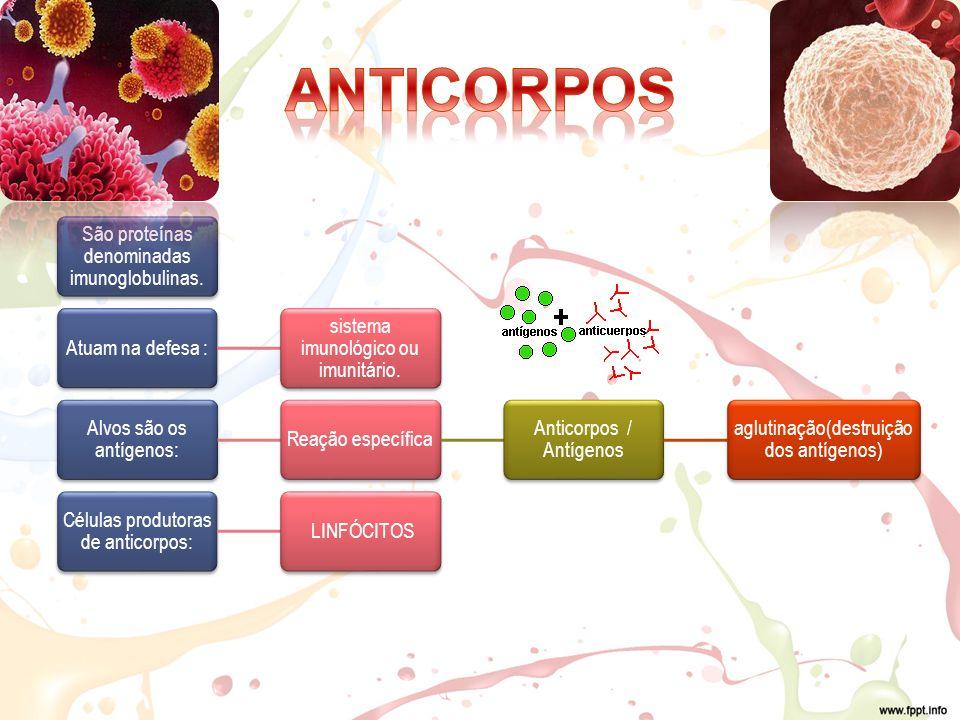 São proteínas denominadas imunoglobulinas.Atuam na defesa : sistema imunológico ou imunitário.