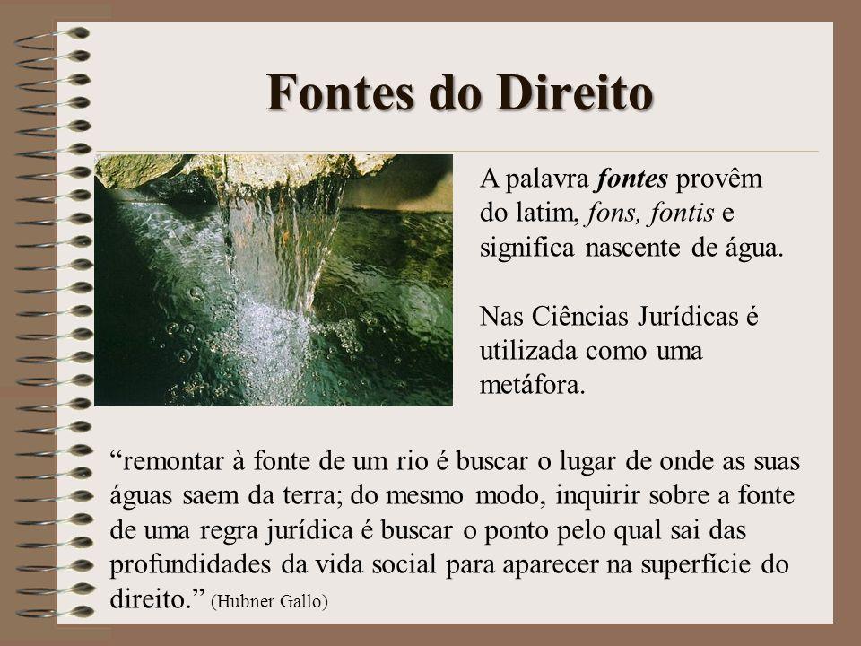 Fontes do Direito A palavra fontes provêm do latim, fons, fontis e significa nascente de água. Nas Ciências Jurídicas é utilizada como uma metáfora. r