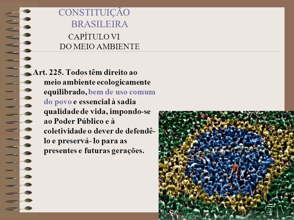 CONSTITUIÇÃO BRASILEIRA CAPÍTULO VI DO MEIO AMBIENTE Art. 225. Todos têm direito ao meio ambiente ecologicamente equilibrado, bem de uso comum do povo