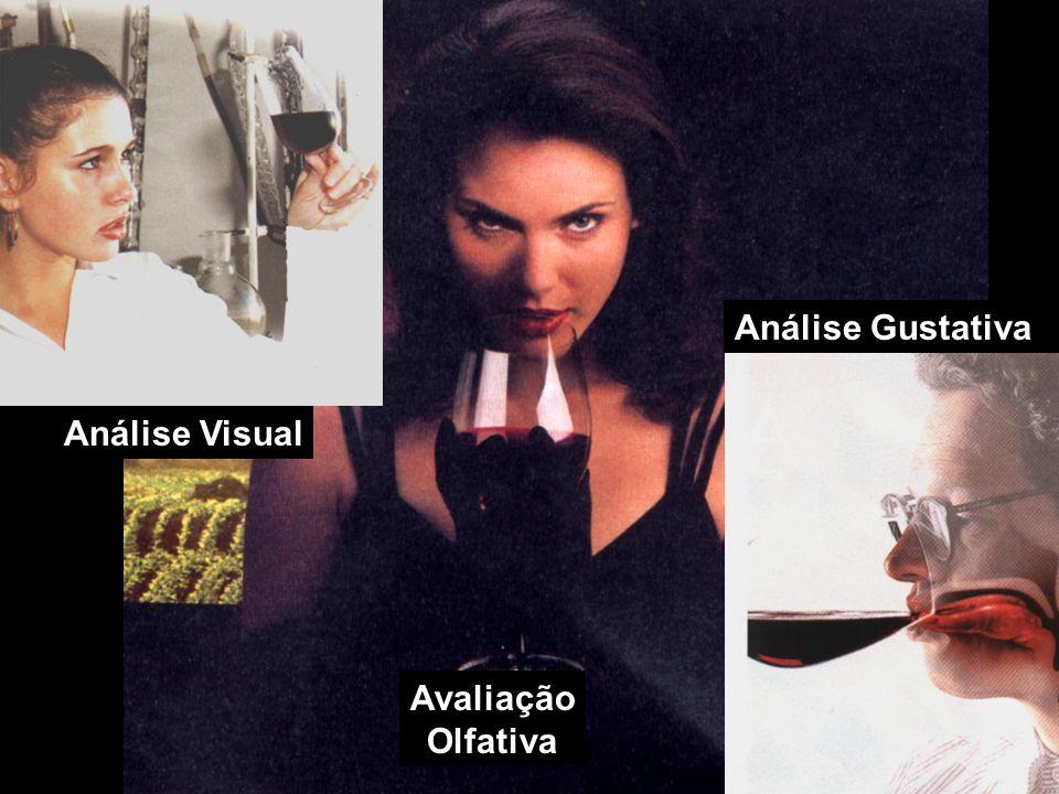 Que tipo de vinho?