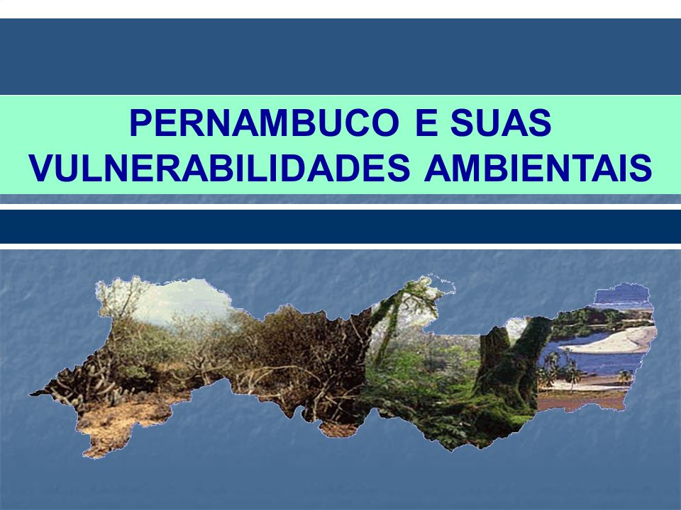 VULNERABILIDADE AMBIENTAL DE PERNAMBUCO Densidade Populacional nas Áreas Urbanas Densidade Populacional nas Áreas Urbanas Aumento Médio do Nível do Mar e Erosão Costeira Aumento Médio do Nível do Mar e Erosão Costeira Áreas Suscetíveis à Desertificação Áreas Suscetíveis à Desertificação