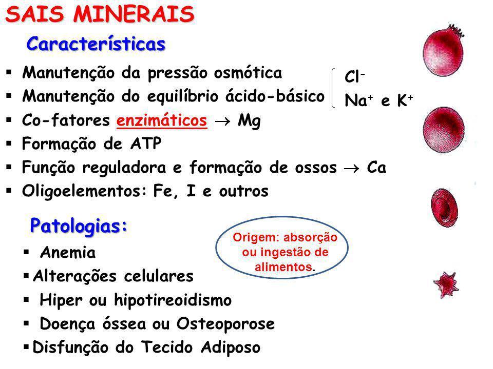 SAIS MINERAIS Características Manutenção da pressão osmótica Manutenção do equilíbrio ácido-básico Co-fatores enzimáticos Mg Formação de ATP Função re