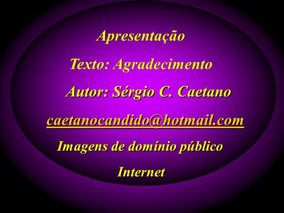 Apresentação Texto: Agradecimento Apresentação Texto: Agradecimento Autor: Sérgio C.