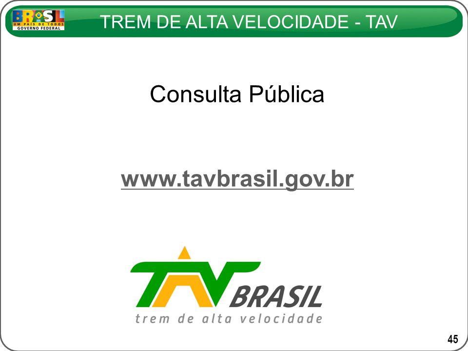 TREM DE ALTA VELOCIDADE - TAV 45 Consulta Pública www.tavbrasil.gov.br