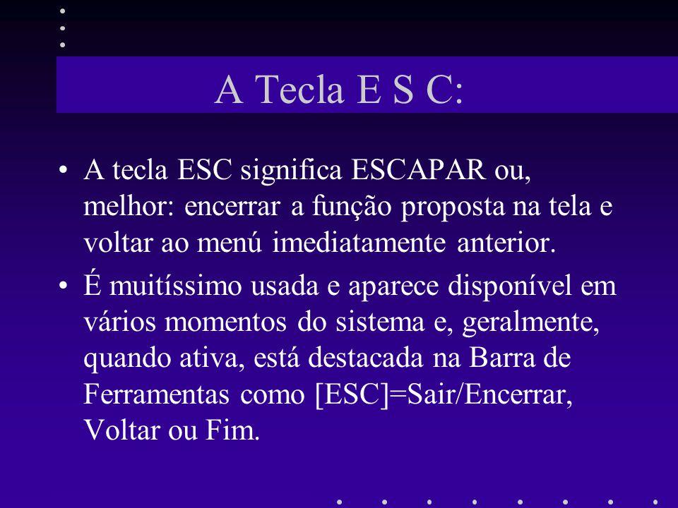A Tecla E S C: A tecla ESC significa ESCAPAR ou, melhor: encerrar a função proposta na tela e voltar ao menú imediatamente anterior. É muitíssimo usad
