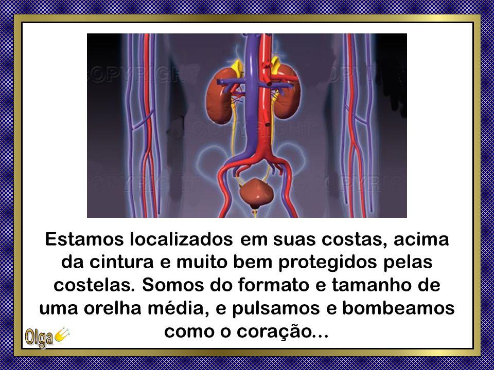 É essencial que aprenda a nos manter saudáveis, porque o funcionamento de todos os órgãos do seu corpo, depende de nós!