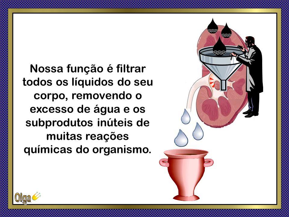 Nossa função é filtrar todos os líquidos do seu corpo, removendo o excesso de água e os subprodutos inúteis de muitas reações químicas do organismo.