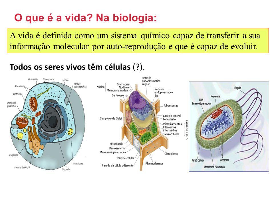 Bioquímica Na Biologia Bio - Vida Logia(logus) - Lugar Na Química Ciência Experimental que estuda a estrutura, composição e a transformação da matéria