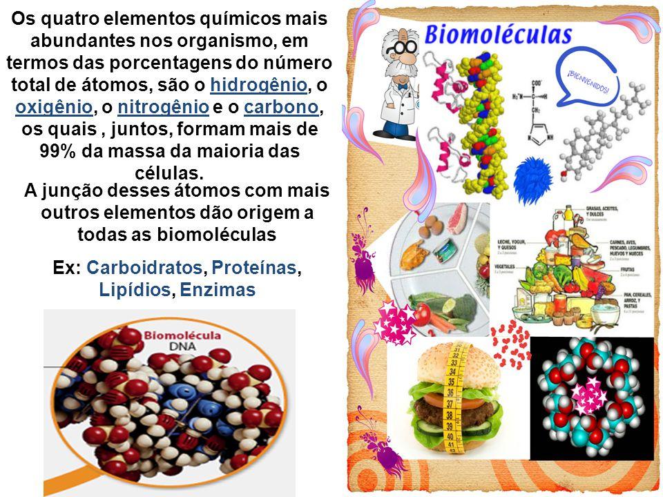Principais questões em Bioquímica - Como as biomoléculas interagem.