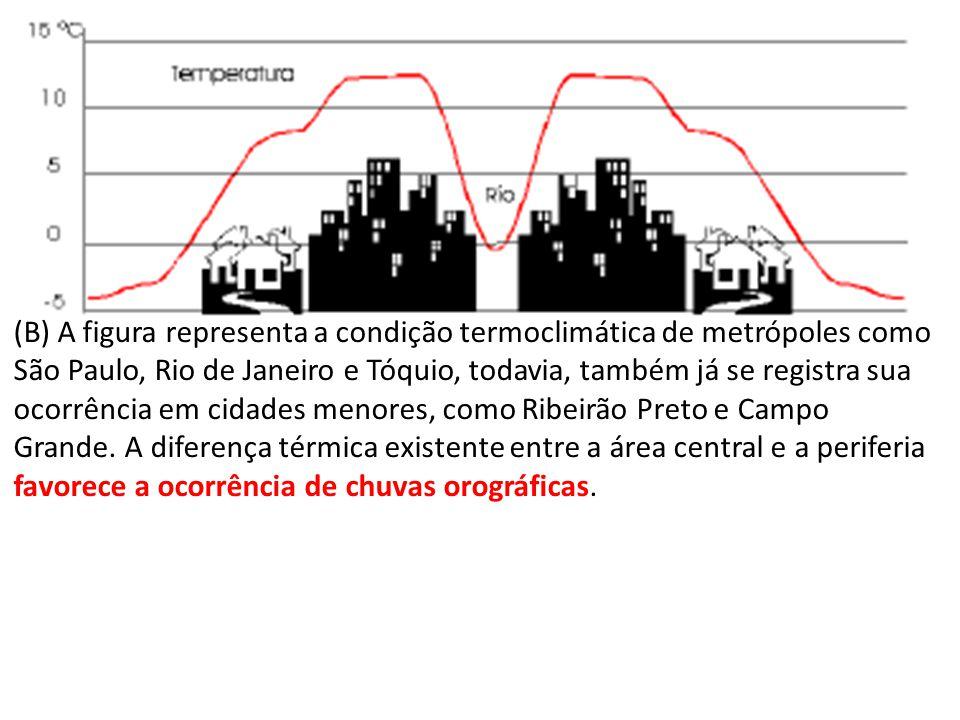 (B) A figura representa a condição termoclimática de metrópoles como São Paulo, Rio de Janeiro e Tóquio, todavia, também já se registra sua ocorrência em cidades menores, como Ribeirão Preto e Campo Grande.
