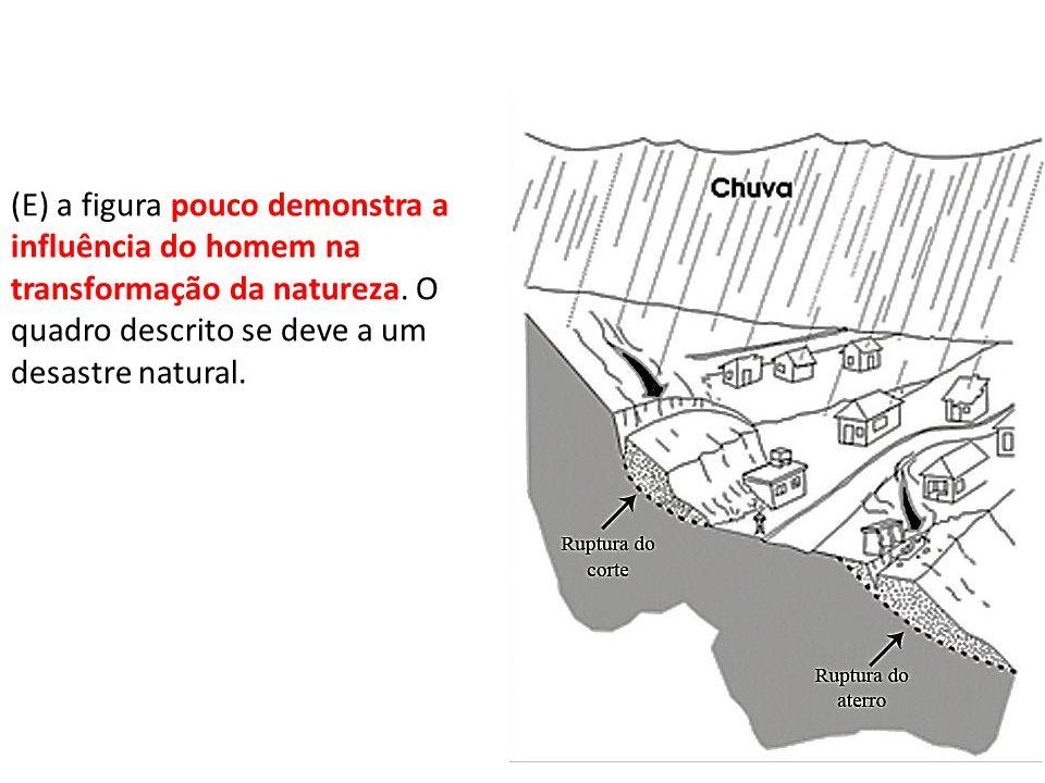 (C) o transporte rodoviário caracteriza-se pelo baixo custo e rapidez nos deslocamentos, o que explica o predomínio deste na dinâmica de transportes no Brasil.
