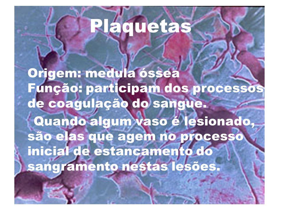 Plaquetas Origem: medula óssea Função: participam dos processos de coagulação do sangue. Quando algum vaso é lesionado, são elas que agem no processo