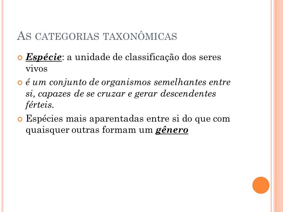 A S CATEGORIAS TAXONÔMICAS Espécie : a unidade de classificação dos seres vivos é um conjunto de organismos semelhantes entre si, capazes de se cruzar e gerar descendentes férteis.