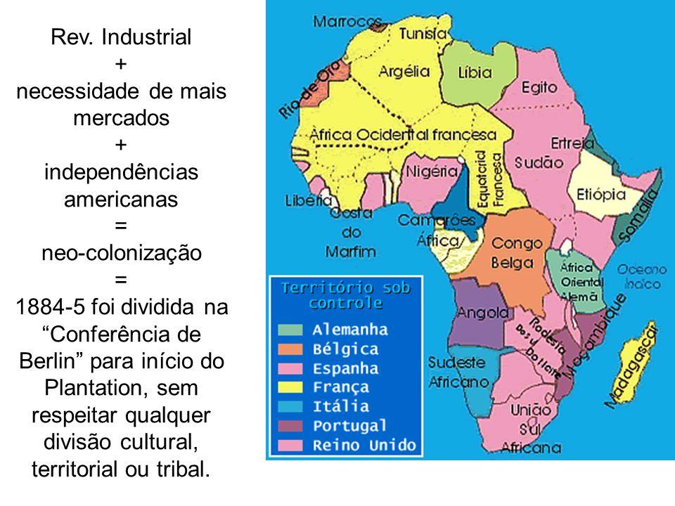Rev. Industrial + necessidade de mais mercados + independências americanas = neo-colonização = 1884-5 foi dividida na Conferência de Berlin para iníci