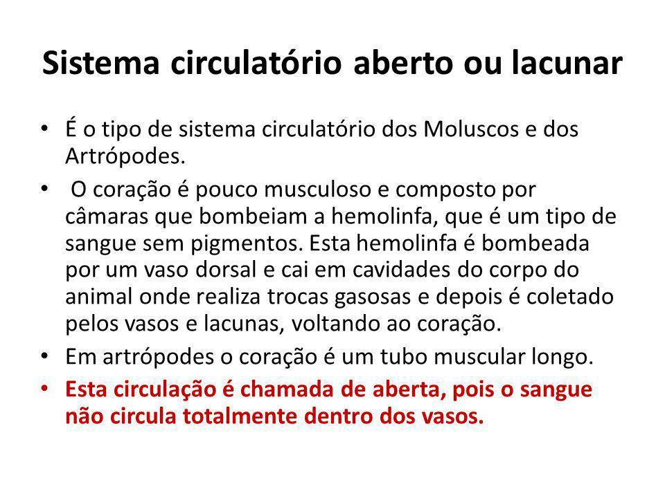Sistema circulatório aberto ou lacunar É o tipo de sistema circulatório dos Moluscos e dos Artrópodes. O coração é pouco musculoso e composto por câma