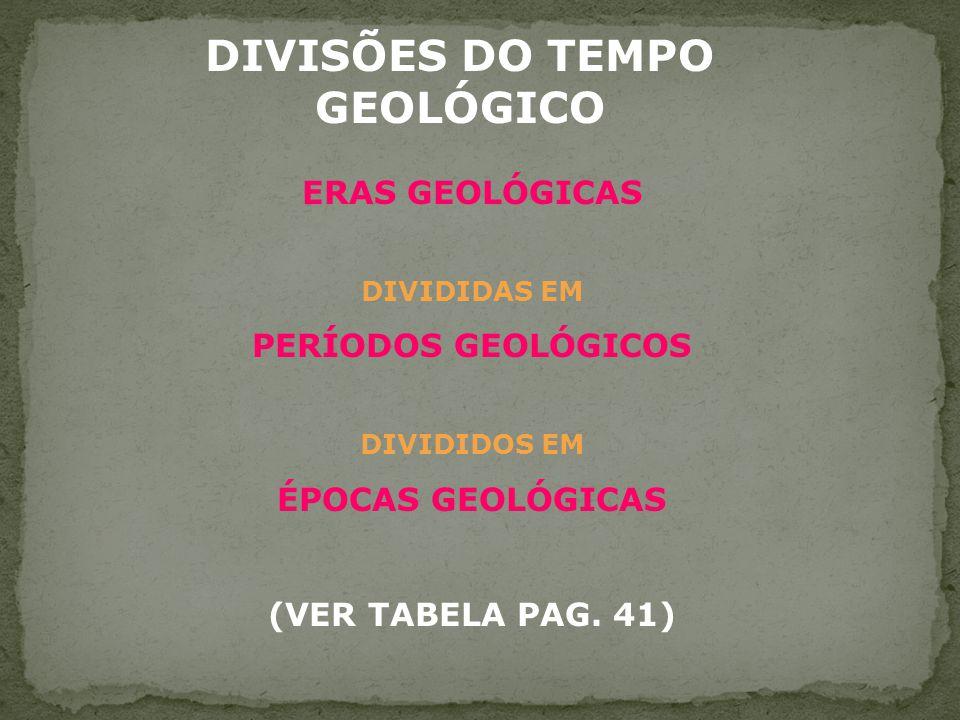 TEMPOS GEOLÓGICOS ERAS GEOLÓGICAS PRÉ-CAMBRIANA PALEOZÓICA MESOZÓICA CENOZÓICA