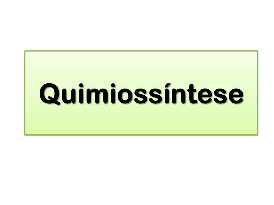 QuimiossínteseQuimiossíntese