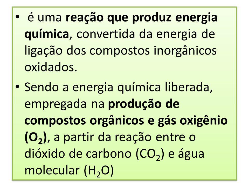 é uma reação que produz energia química, convertida da energia de ligação dos compostos inorgânicos oxidados. Sendo a energia química liberada, empreg