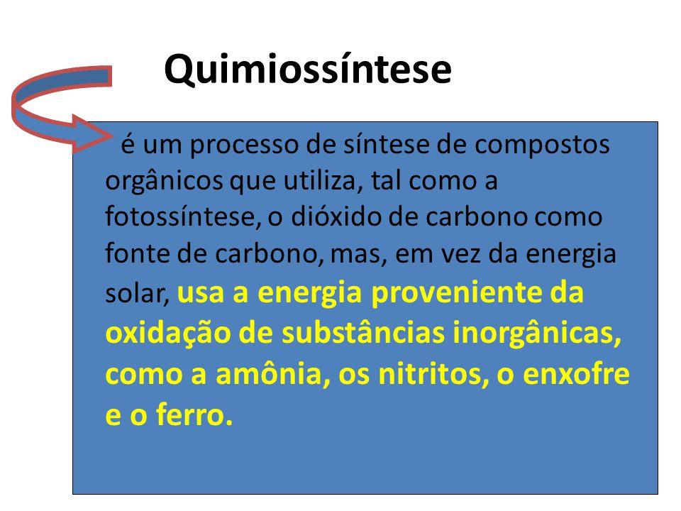 Quimiossíntese é um processo de síntese de compostos orgânicos que utiliza, tal como a fotossíntese, o dióxido de carbono como fonte de carbono, mas,