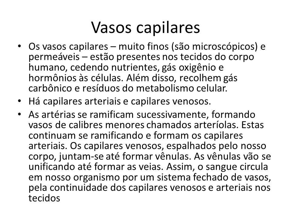 Vasos capilares Os vasos capilares – muito finos (são microscópicos) e permeáveis – estão presentes nos tecidos do corpo humano, cedendo nutrientes, gás oxigênio e hormônios às células.
