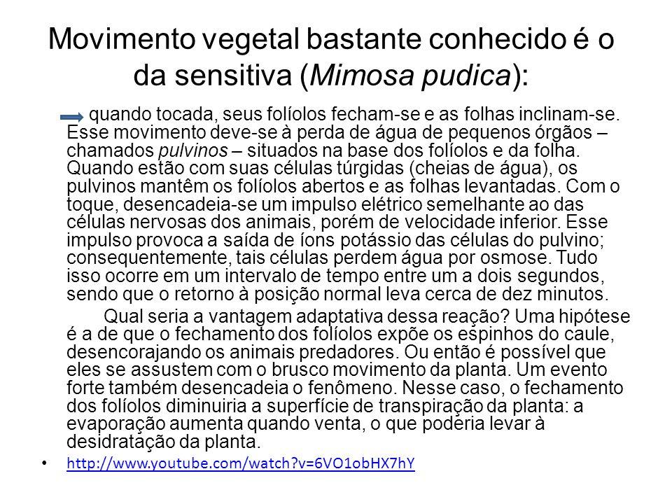 Movimento vegetal bastante conhecido é o da sensitiva (Mimosa pudica): quando tocada, seus folíolos fecham-se e as folhas inclinam-se. Esse movimento