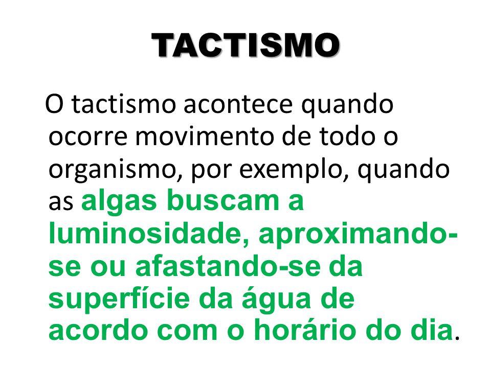 TACTISMO O tactismo acontece quando ocorre movimento de todo o organismo, por exemplo, quando as algas buscam a luminosidade, aproximando- se ou afast