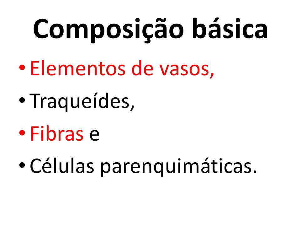 Composição básica Elementos de vasos, Traqueídes, Fibras e Células parenquimáticas.