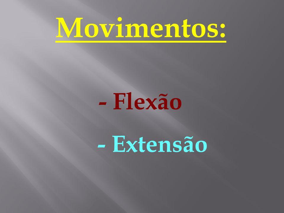 Movimentos: - Flexão